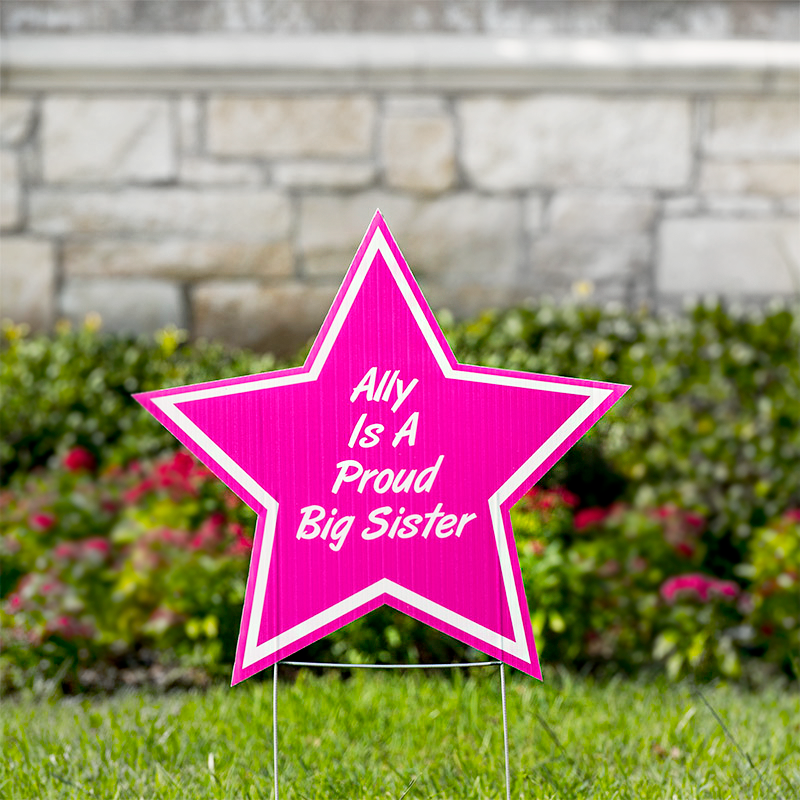 Star Yard Signs